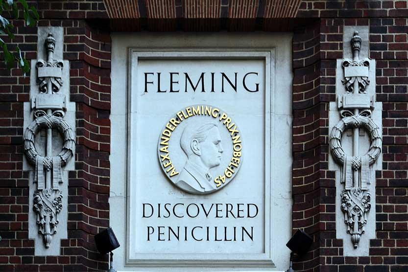 Alexander Fleming Penicllin
